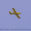 A yellow-bellied Round-Up sprayer, in flight.
