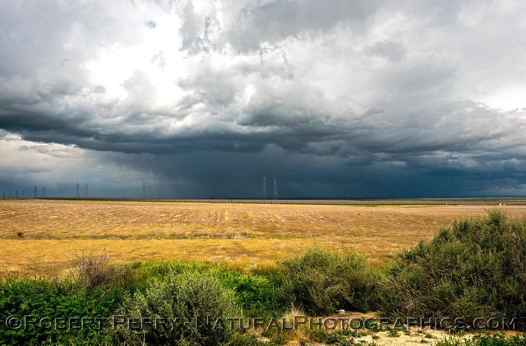 A wide-angle view of dark clouds, intense rain and, in the foreground, bright sun.