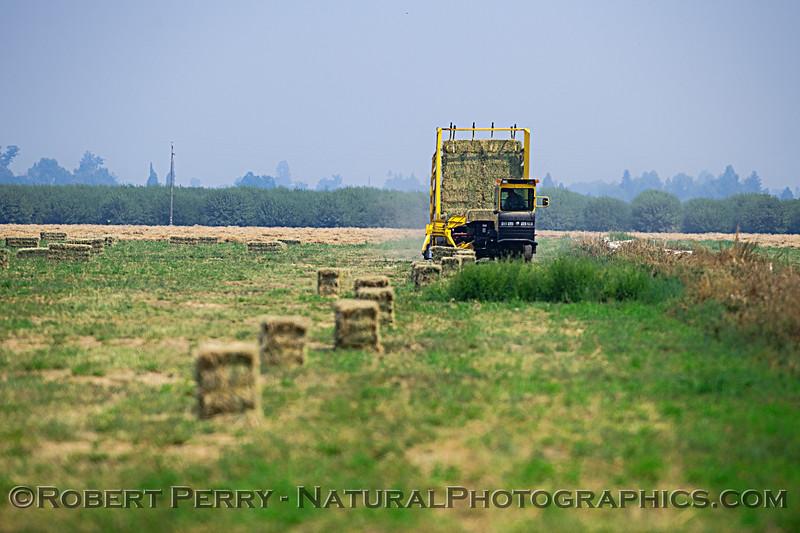 farm equipment hay bailer 2018 08-04 Woodland -- 003