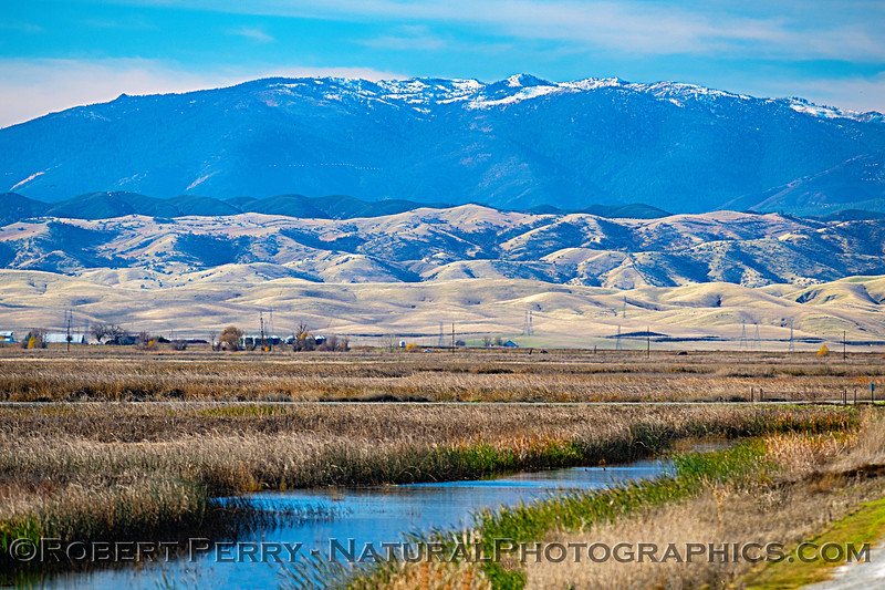 Winter wetlands - Snow Mountain, Mendocino National Forest in back.