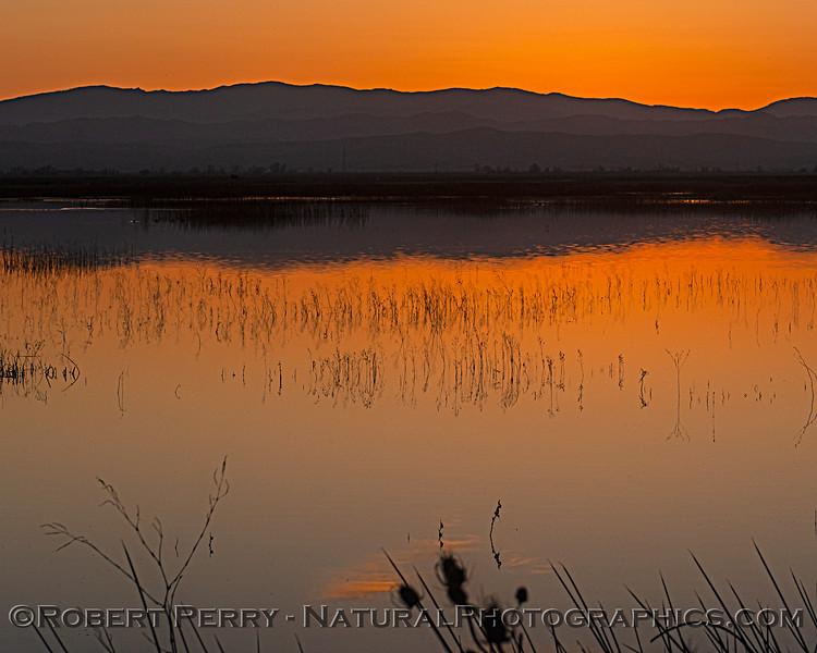 2020 02-18 Sunset Sac NWR-b-077