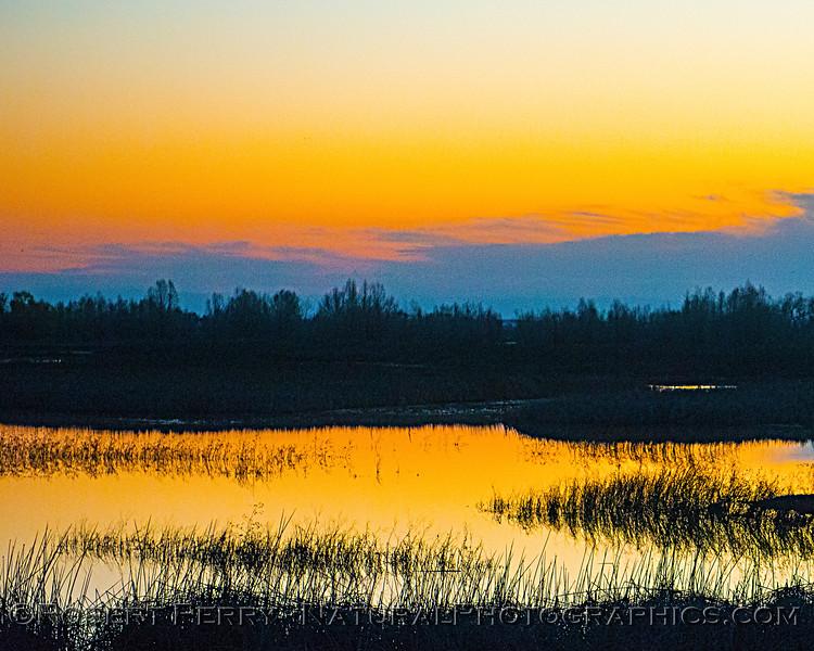 Sunrise 2020 02-18 Sunrise Sac NWR-o-021