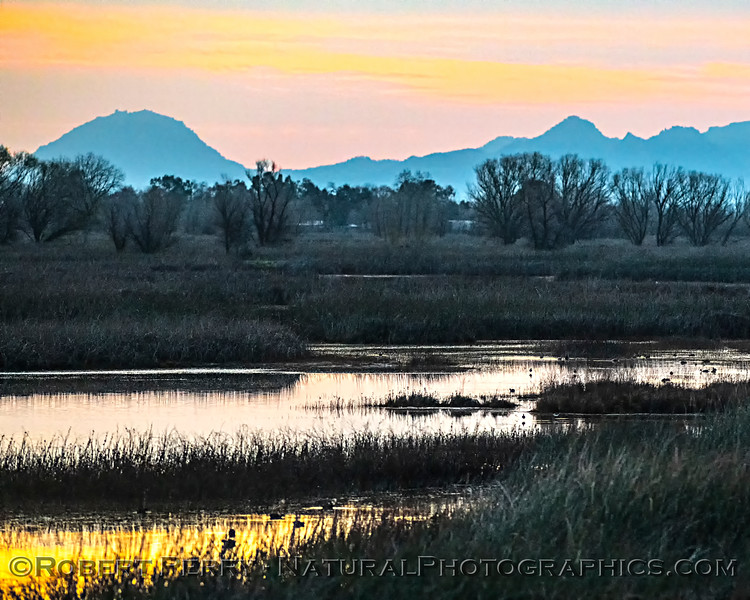 Sunrise wetlands Sutter Buttes in background 2020 02-18 Sunrise Sac NWR-o-043