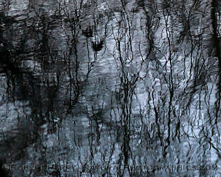 Sunrise North Fork Logan Creek reflections 2020 02-18 Sunrise Sac NWR-o-092
