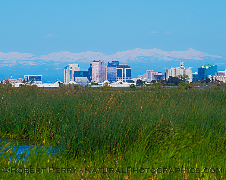 Sacramento as seen from the wetlands.
