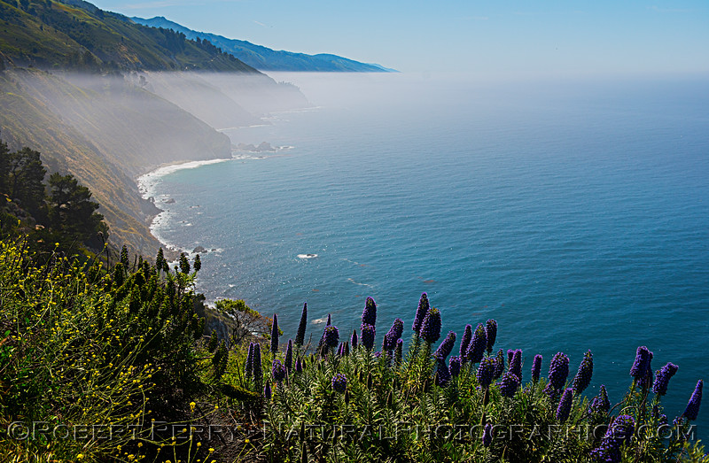 Inversion layer with ground fog in the distance - Big Sur