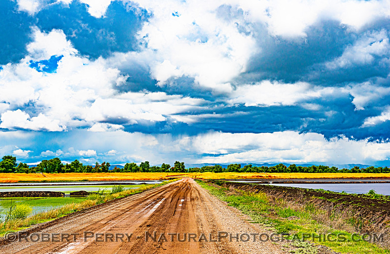 Rain, clouds, dirt road, rice ponds.  Mendocino coastal mountains in back.