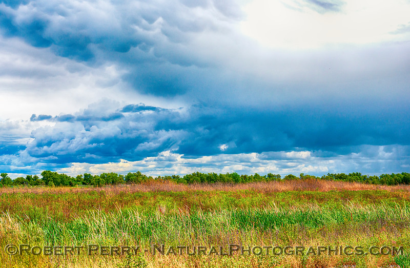 Open fields of a wildlife refuge with stormy skies.