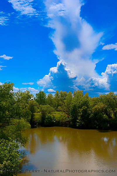 Storm clouds, treeline and river.