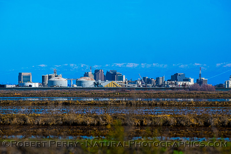 City of Sacramento with snow in background 2021 02-05 Yolo ByPass-b-002