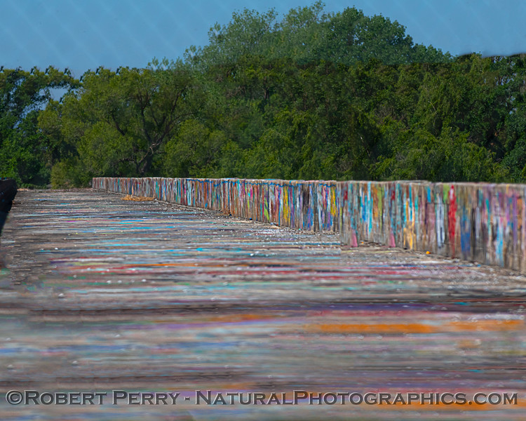 Old Long Bridge over Buttes slough w grafitti 2021 05-05 Gray Lodge--004