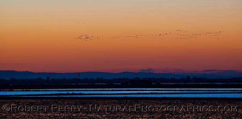 Sunrise 2020 12-10 Llano Seco-PANO-098