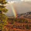 Denali National Park Rainbow