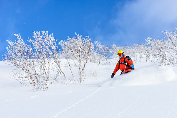 Powder skiing, Hokkaido, Japan
