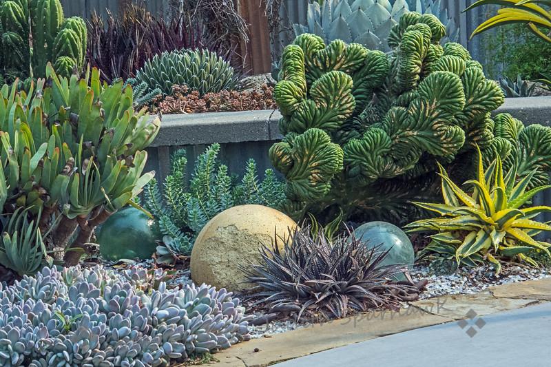 The Harmony Garden