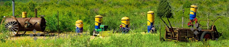Minions on the Farm - Judith Sparhawk