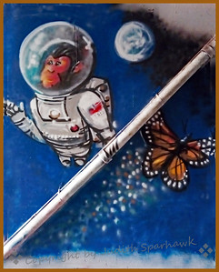 Butterfly in Outer Space - Judith Sparhawk