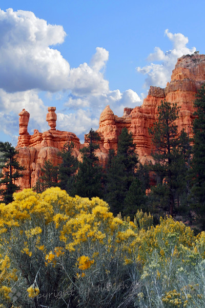 Hoo-Doos of Red Canyon