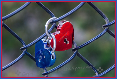 Love Locks - Judith Sparhawk