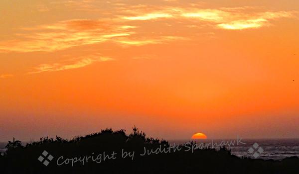 The Last Sunset - Judith Sparhawk