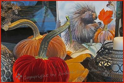 The Velvet Pumpkins - Judith Sparhawk