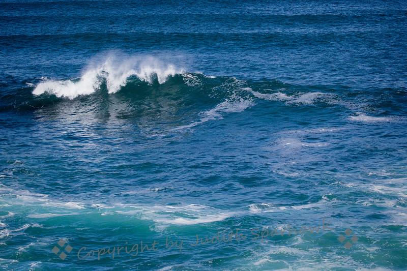 Wave Beauty