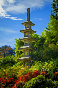Pagoda on the Hill