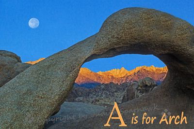 A is for Arch