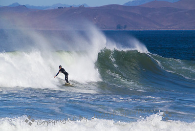 Surfing the Rainbow - Judith Sparhawk