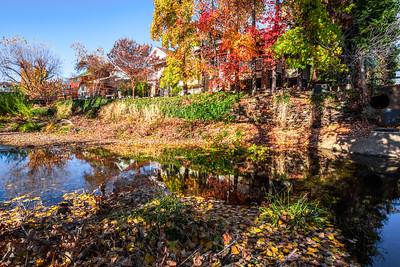 Autumn on Sutter Creek