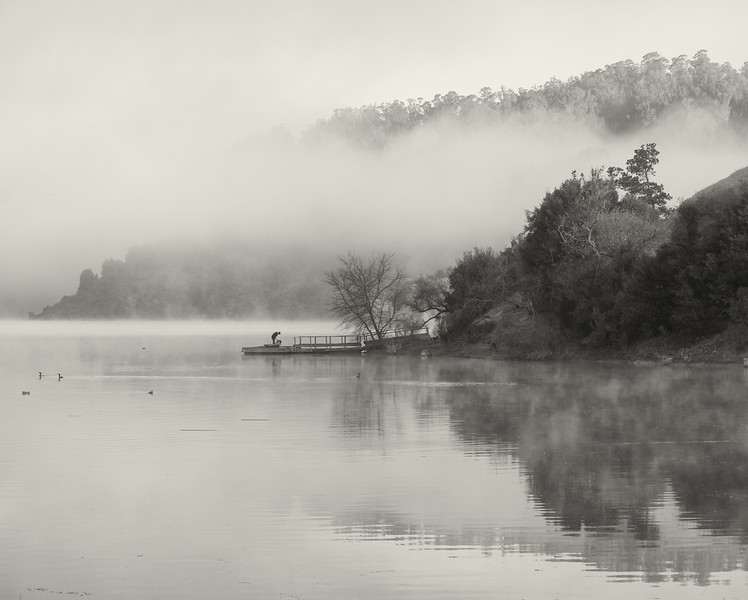Foggy Morning at Lake Chabot