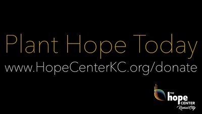 Hope Roots Campaign - Plant Hope Today