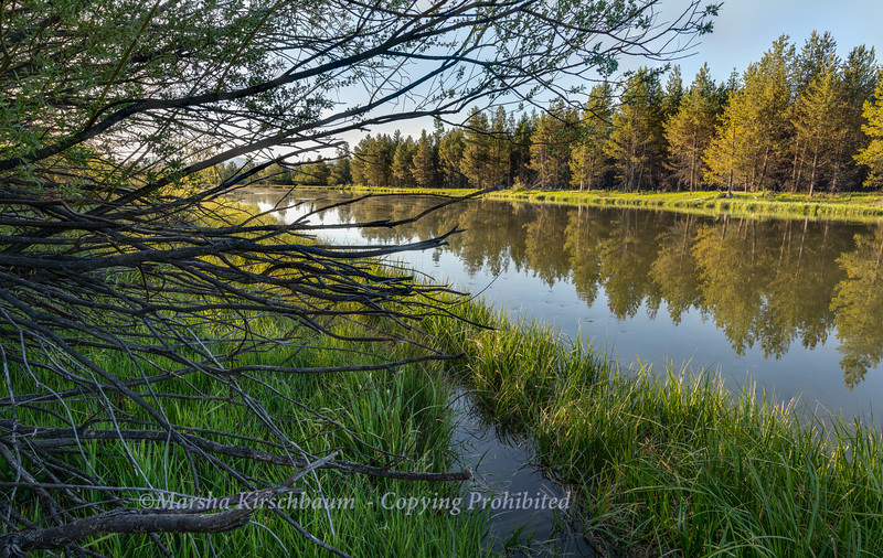 Early Morning on the Deschutes River