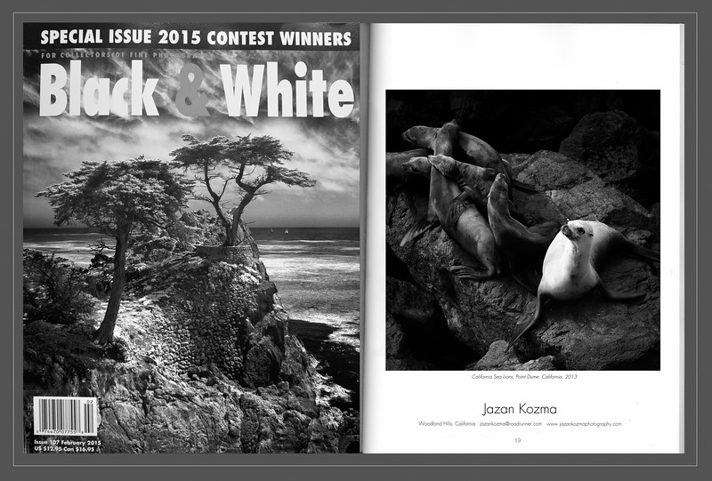 Black & White Magazine 2015  Contest Winner Jazan Kozma, Catagory: Animals