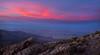 Augerberry Sunset