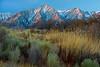 Sunrise at Moffat Ranch Lights the Sierras