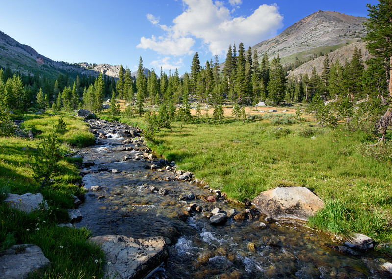 Return Creek, Virginia Canyon, Yosemite