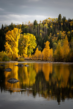 September reflections on the Elk River, Clark , CO.