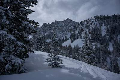 Mount Olympus Wilderness in Winter