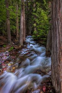 Sprague Creek