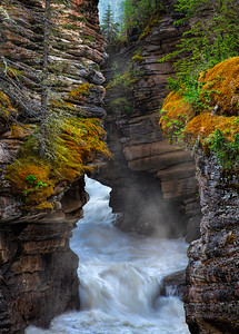 Athabasca River Gorge