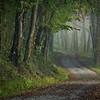 Along The Narrow Way II
