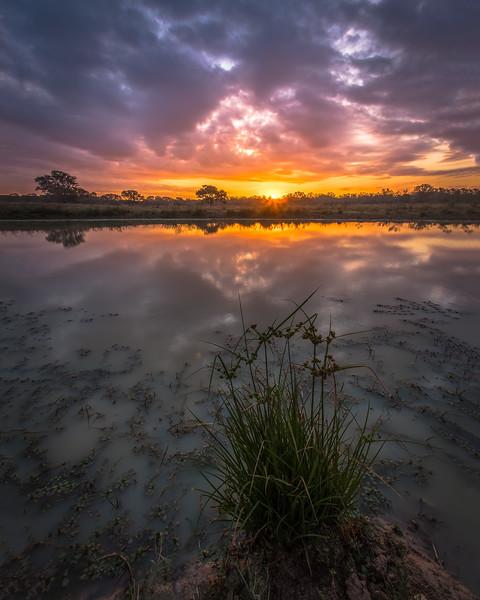 Texas Ranch Sunrise 2
