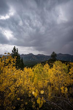Fall colors above Breckenridge, Aspen Alley Trail.