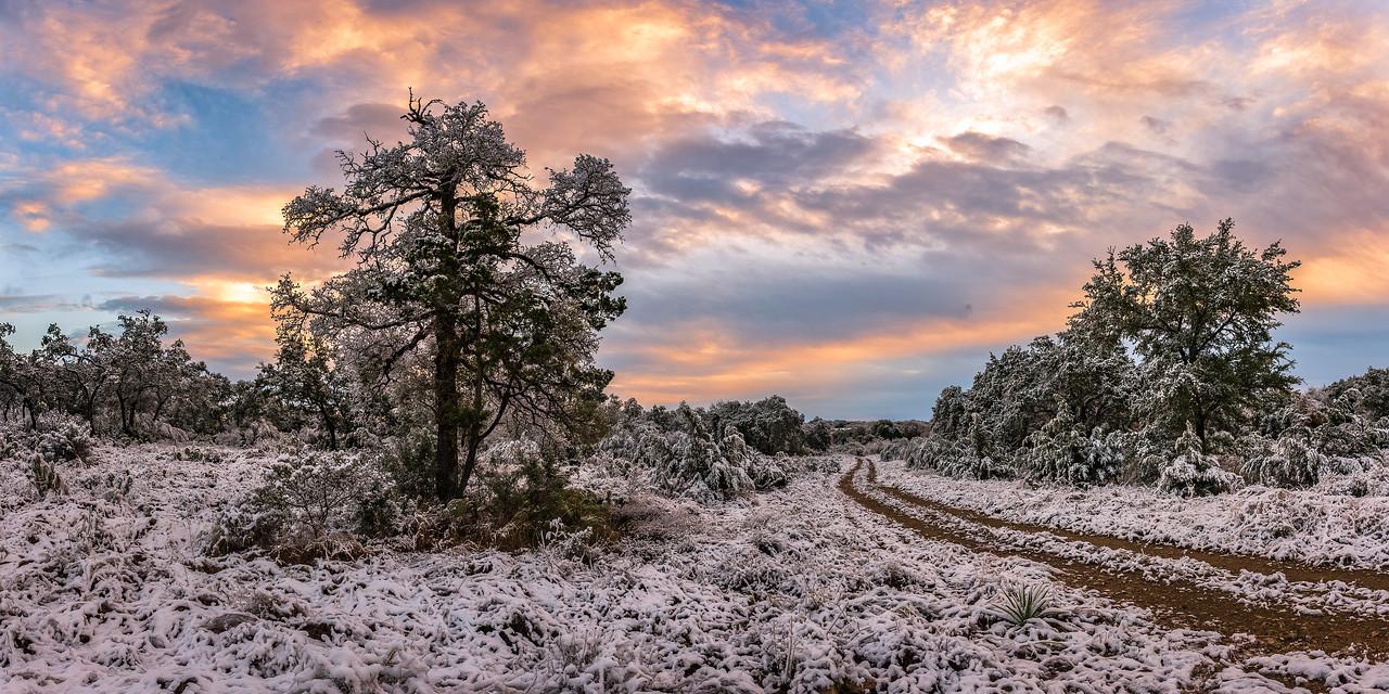 Road Through a Winter Wonderland