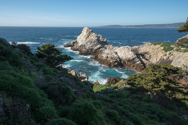 Ocean Views at Point Lobos III