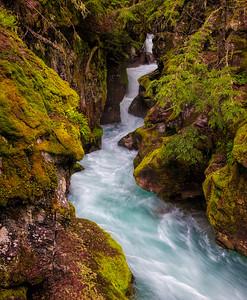 Avalanche Creek, Glacier NP
