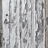 The White Door - Arles, France
