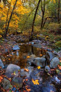 Stevens Creek #2, CA