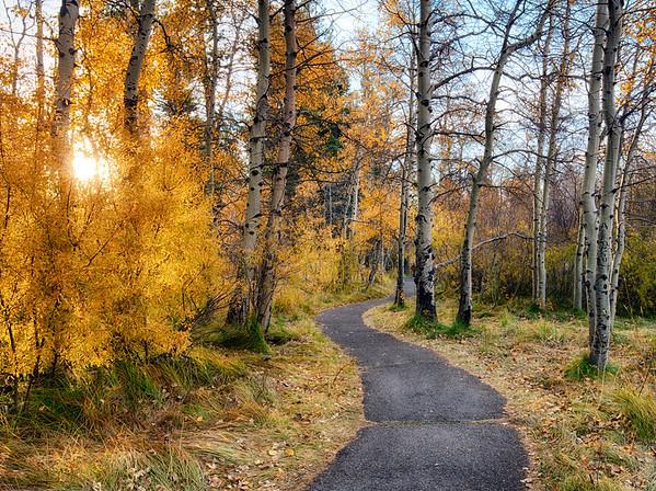 aspen path_DSC1440